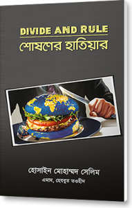 divide-and-rule-book-cover